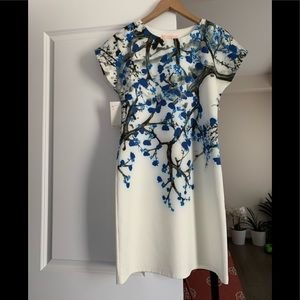 Dress | NWT | European designed  dress